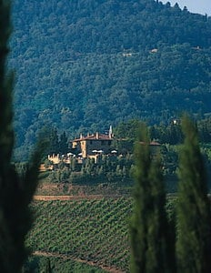 Tuscany vineyard wedding Capannelle